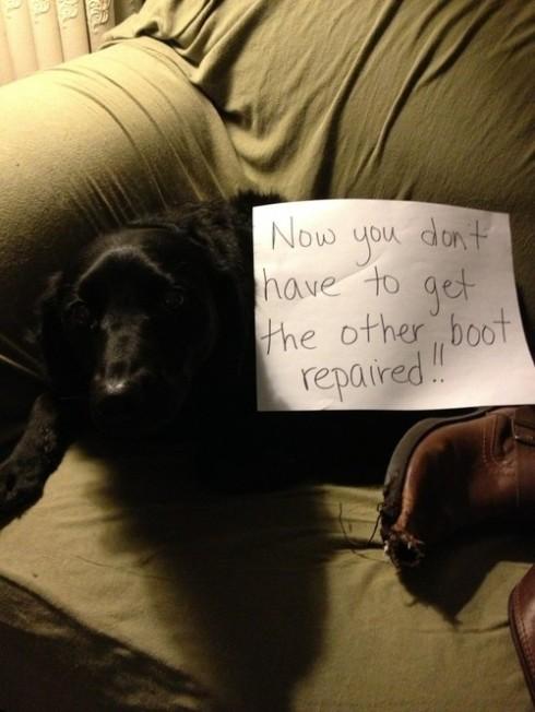 Agora você não precisa colocar sua outra bota pra arrumar