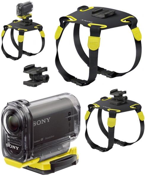 Camera-canina-bem-legaus-2