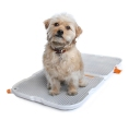 portable_dog_potty_01
